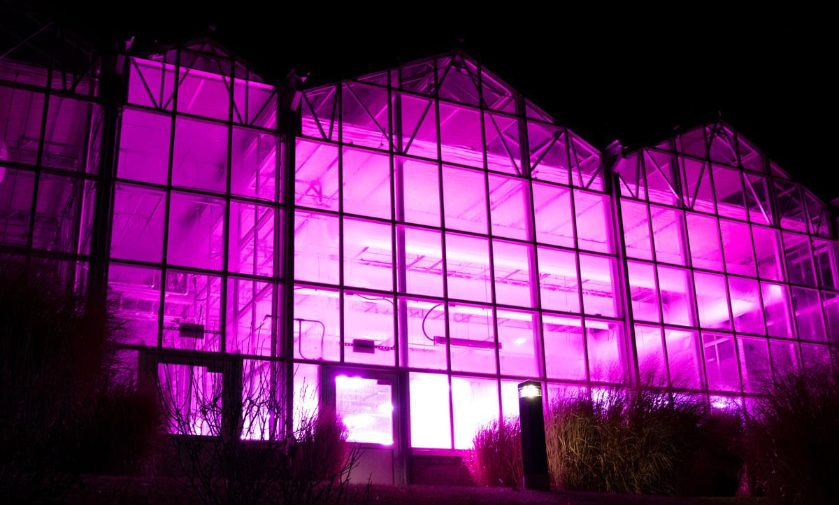 The Greenhouse Innovation Center on Nebraska Innovation Campus pictured on Sunday, Feb. 9, 2020, in Lincoln, Nebraska. Photo by Zekiel Williams