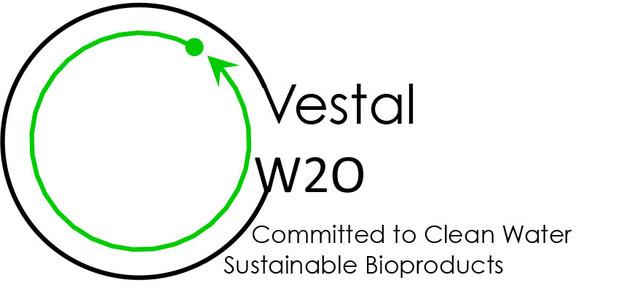 Vestal W20 logo